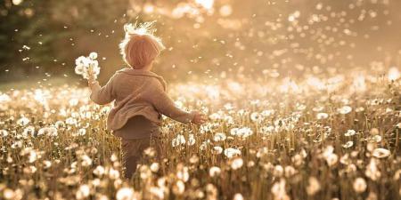 """""""По-справжньому щасливими ми можемо бути тільки з Христом"""", - коментар Євангелія дня"""