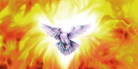 """""""Символи Святого Духа"""", - коментар Євангелія дня"""