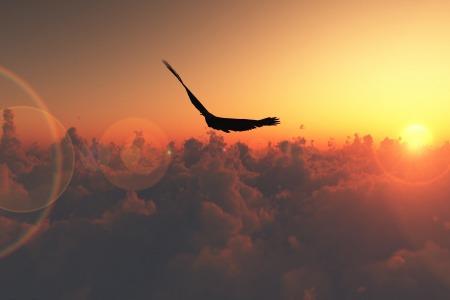Справжня свобода - це прихилити небо іншій людині