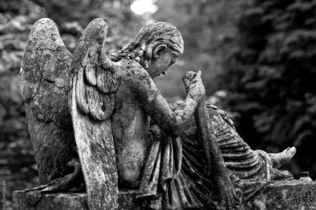 Святі Меси на кладовищах з нагоди Задушного Дня