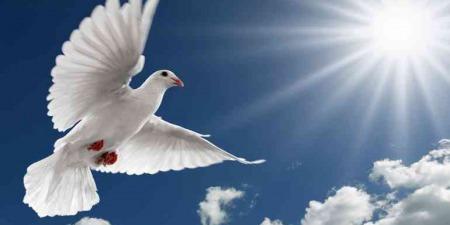 """""""Без світла Святого Духа не зможемо розпізнати час Антихриста"""", - коментар Євангелія дня"""