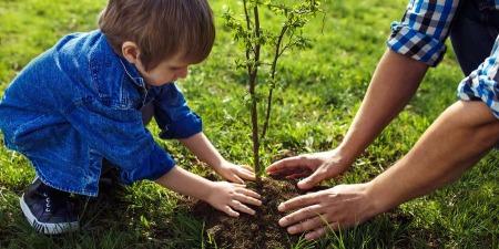 Екологічне виховання дітей: міняймо світ через виховання наших дітей